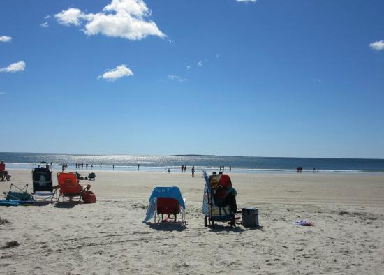 The Grand Beach Inn: beach
