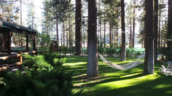 Fawnskin, Kaliforniya: The property