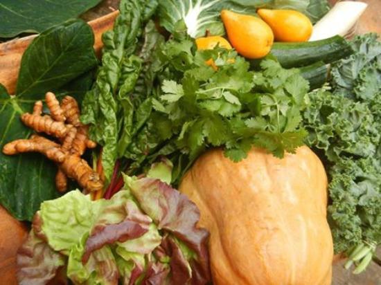 Fresh Produce straight from Kealia Farm