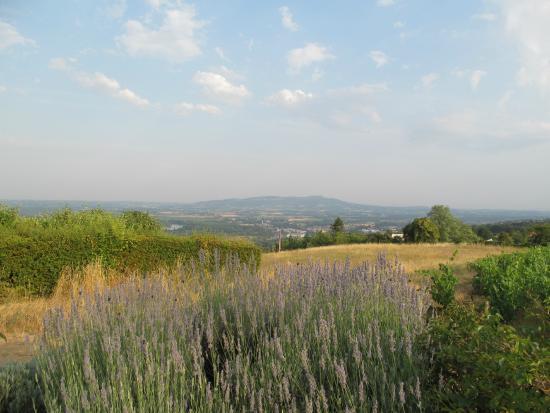 View From The Restaurant Photo De Les Terrasses De