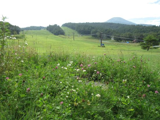 Shirakaba Highland International Ski Area: 真夏の白樺高原国際スキー場
