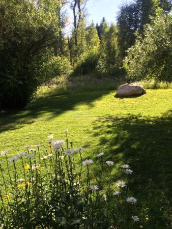 Mariposa Lodge Bed and Breakfast : photo4.jpg