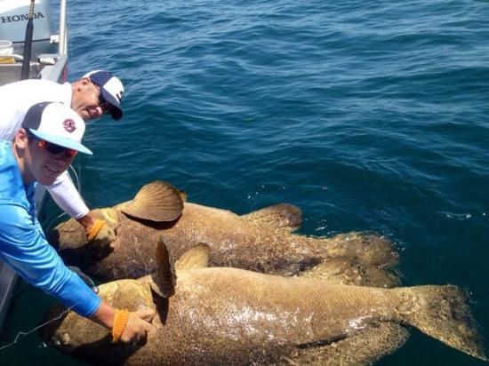 Picture of sanibel offshore fishing charters for Deep sea fishing ft myers