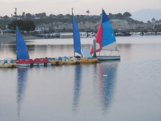 Newport Dunes Waterfront Resort: Beautiful Bay