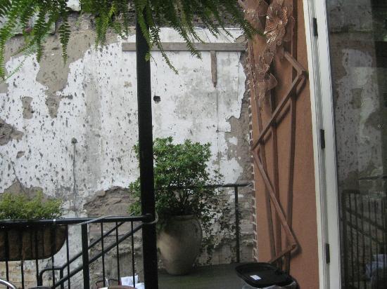 Coolato Gelato: Outdoor flora