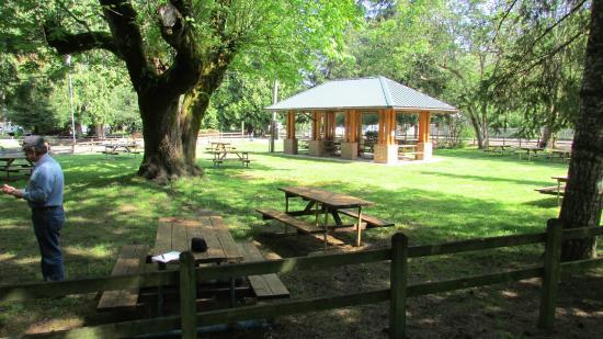 Molalla, OR: Main picnic shelter