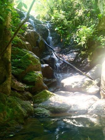 Rancho El Charro: photo1.jpg