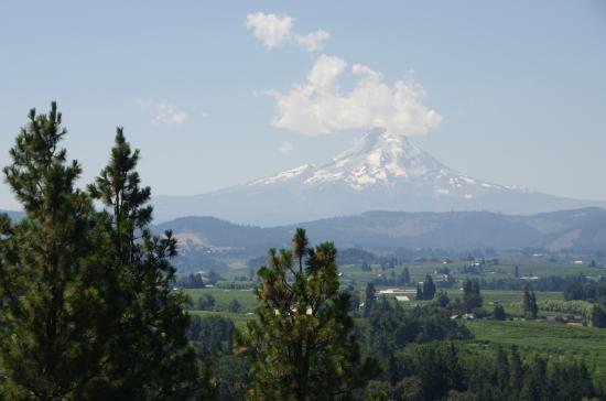 Hood River, OR: Mt Hood seen from Panorama Point County Park