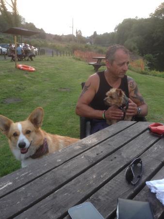 Jackfield, UK: Beer garden