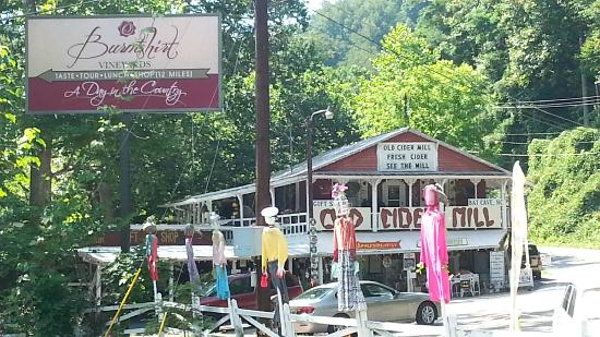 The Old Cider Mill & Applesolutely Gift Shop: Whimsical