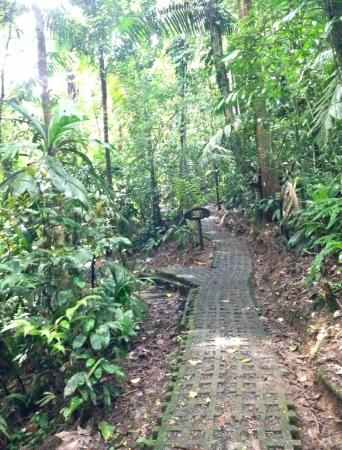 Heredia, Costa Rica: Trails are clearly marked and paved for much of the way.