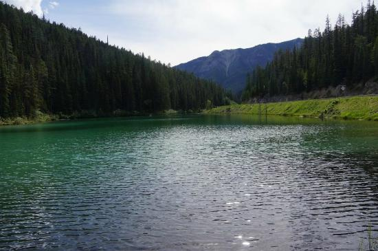 Radium Hot Springs, Kanada: Beautiful Olive Lake