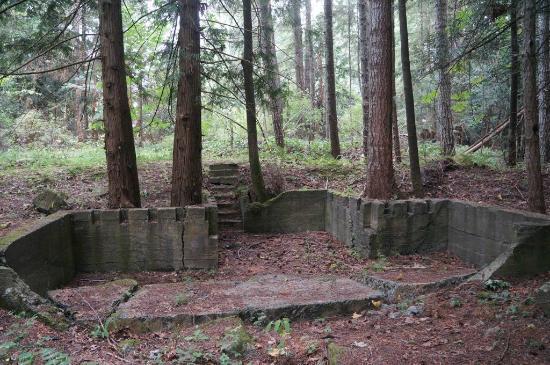 Nanaimo, Canada: Lots of Ruins.