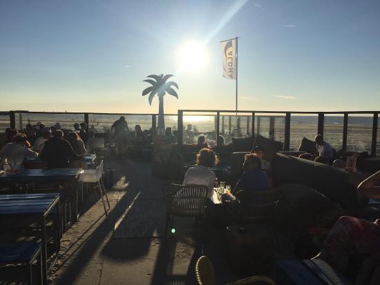 Velsen, Países Bajos: Aloha Wijk Aan Zee
