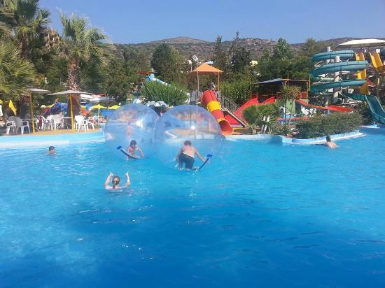 dejlig pool - Foto van Acqua Plus Water Park, Chersonissos ...