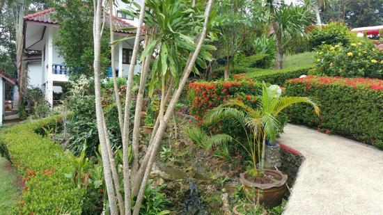 TOP Resort: From the garden