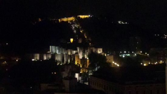 AC Hotel Malaga Palacio: Vistas desde la terraza