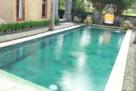 Villa Kubu Merta: swimingpool