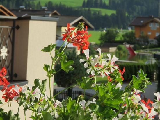Kesselgrubs Ferienwelt: view