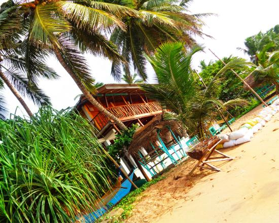 Reggae Zone Beach Resort