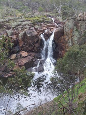 Hamilton, Australien: Nigretta Falls