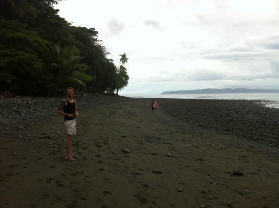 Mira Olas Pavones Cabins: The beach of Pavones