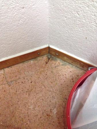 Apartaments Estudis Els Molins: Вот это собственно фото номера. Сломанная розетка, грязь ужасная посуда. Столовые приборы лежат