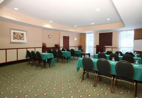 Courtyard Philadelphia Montgomeryville: Meeting Room