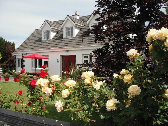 Briar Lodge: Front Garden