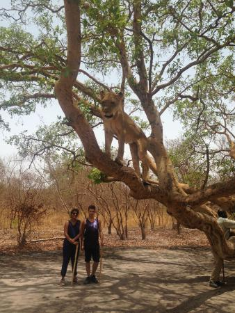 Us on a safari in Senegal, guided by Mo and arranged by Patricia at Devon Lodge