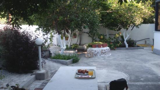 Platon Hotel: The back garden of the hotel