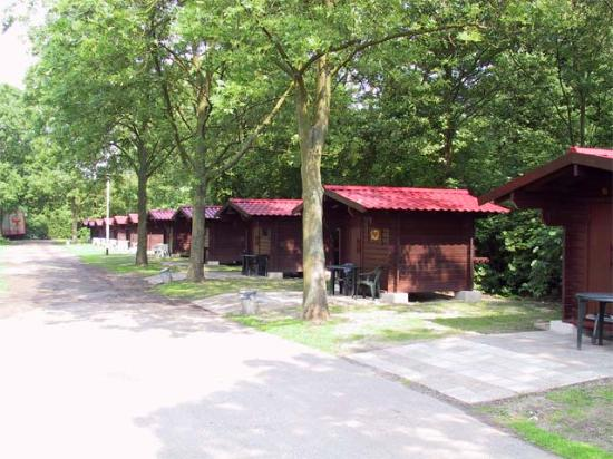 Stadscamping Rotterdam : cabins for 2 or 4 persons.