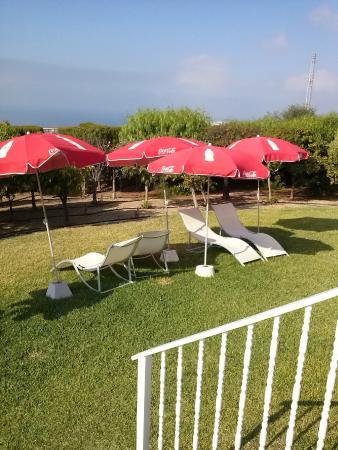 Al-Andalus Hotel: zona verde de la pisci