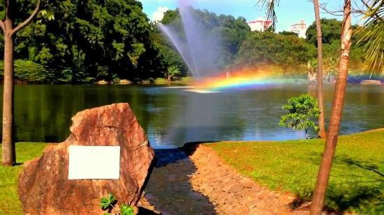 Parque Areião: Lago