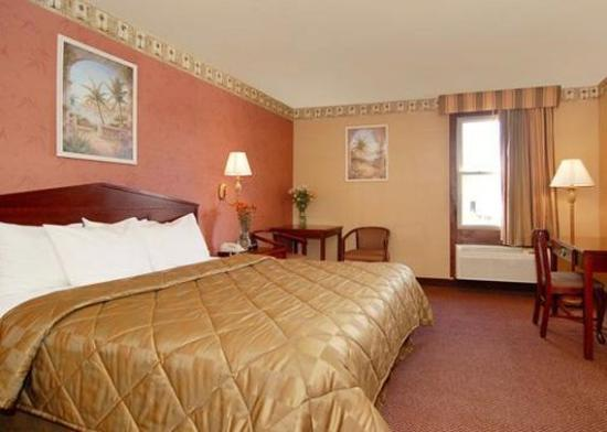 Quality Inn Levittown: Guest Room