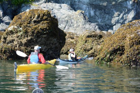 Soaring Eagle Lodge: Kayaking