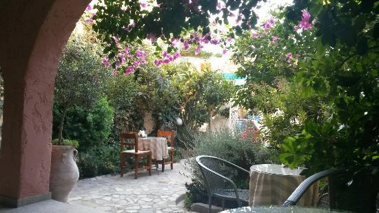 Hotel Idi : Very nice garden.