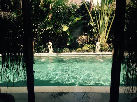 Villa La Novellina : Didn't want to leave