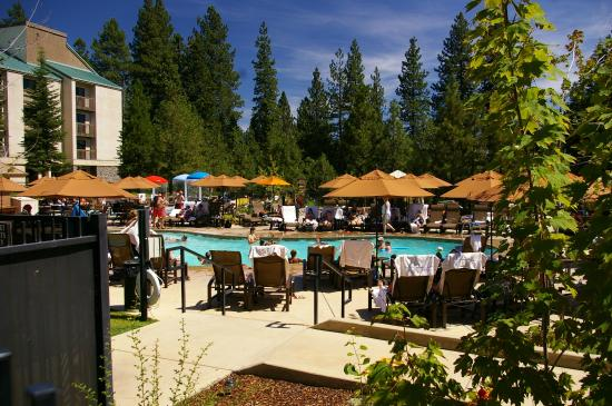 The kids loved the pool picture of tenaya lodge at for Fish camp lodging
