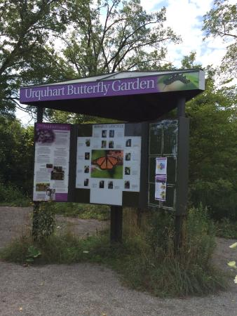Dundas, Canada: Things you'll see in the Urquhart Butterfly Garden