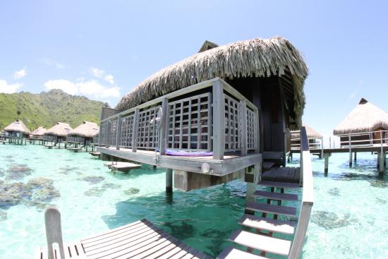 Overwater Bungalow 83 Picture Of Hilton Moorea Lagoon