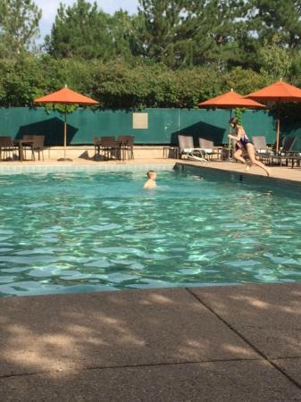 Kids Enjoying The Outdoor Pool Picture Of Hilton Denver Inverness Englewood Tripadvisor