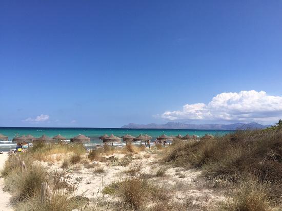Grupotel Natura Playa : Playa de Muro
