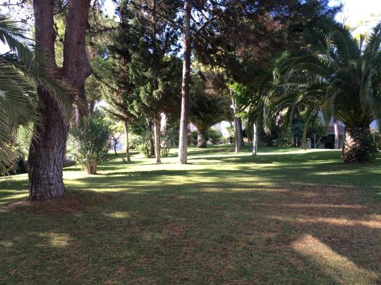 Vilar do Golf: Garden view