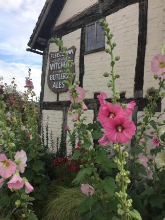 The Fleece Inn: Hollyhocks in the sun