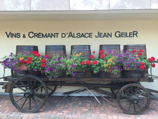 Vignoble Jean Geiler