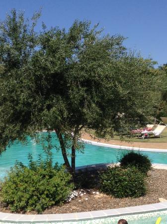 Hotel Giardino Corte Rubja : Hotel pool