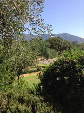 Hotel Giardino Corte Rubja : View from pool