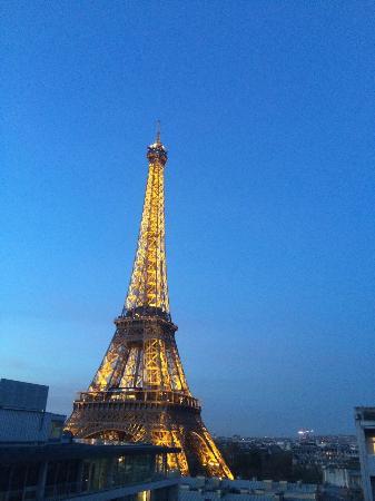 Picture Of Pullman Paris Tour Eiffel Paris