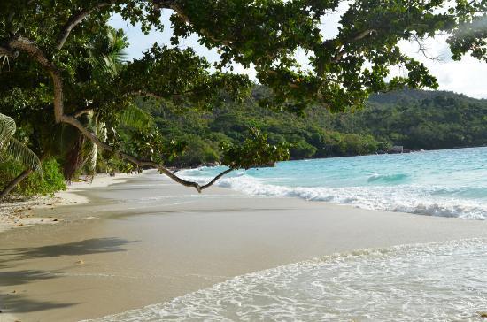 Praslin Island, Seychelles: Traumstrand mit Auszeichnung!
